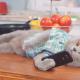 Что коты делают в instagram?