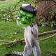 Лемуры примерили маски для Хэллоуина