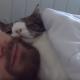 Мужчина приютил «самого нежеланного» кота в приюте!