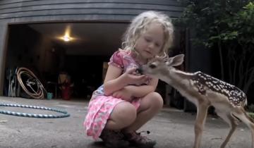 Два ребенка нашли друг друга