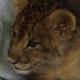 Маленький львенок пытается зарычать