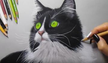 Очень красивый портрет кошки!