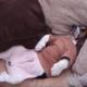 Пес спит, как человек