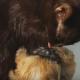 Заботливая кошка приютила маленького щенка