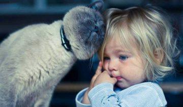 Вы только посмотрите, как отреагировала эта малышка, когда увидела котика!