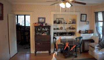 Собака пытается поймать морковку