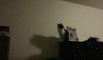 Просто невероятный прыжок