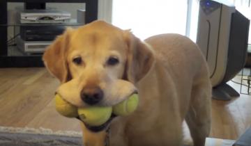 Улыбка с мячиками во рту