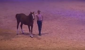 Самые невероятные кадры, которые я когда либо видела с лошадью!