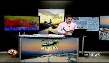 Неожиданный гость на ТВ: бездомный котенок прервал новостной эфир