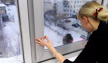 Наглое ограбление: ворона украла ложку у сотрудников офиса
