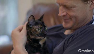 Бездомный котенок стал настоящим спасением для семьи, потерявшей ребенка