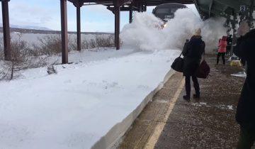 Видео с «сумасшедшим» поездом стало настоящим хитом