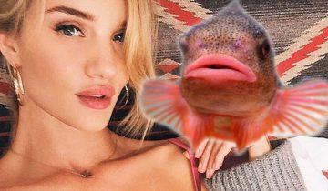 Новый тренд в Инстаграм: вместо «губы уточкой» в моде «рыбий зевок» (7 фото)