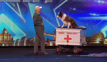 Удивительное выступление умного пса на шоу стало хитом интернета