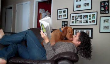 Почитаю-ка с собакой: веселый ролик для хорошего настроения