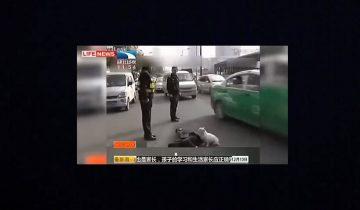 Собака до последнего защищала хозяина, который упал в обморок