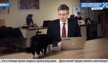 Черный кот помогает мэру Риги отвечать на вопросы в прямом эфире