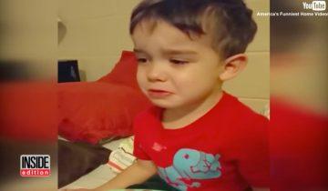 Малыш расплакался, увидев ужин, приготовленный мамой