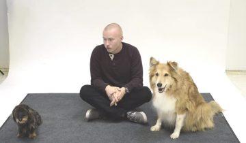 Смешная реакция собак на человеческий лай