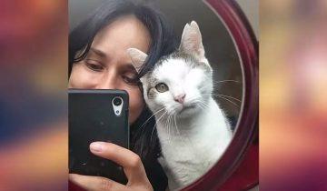 Кот остался без глаза, но зато обрел любящих хозяев и теплый кров
