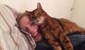 «Твое лицо такое удобное!» Кот «тестирует» девушку своего владельца
