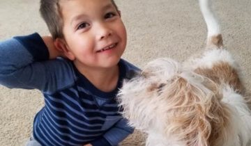 Этот мальчик вместо подарков на день рождения помог собакам из приюта