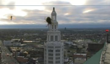 Ведущий прогноза погоды в США повеселил публику, испугавшись паука