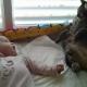 Кот настолько засмотрелся на младенца, что упал с кровати