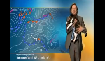 Кот прервал прогноз погоды в Германии