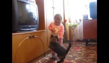 Кошка отбирает своего котенка у плачущей малышки