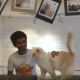 Добро пожаловать в настоящий 5-звездочный отель для кошек! (7 фото)