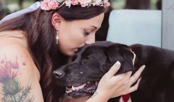 Умирающий пес стал почетным гостем на свадьбе своей хозяйки