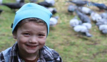 6-летняя девочка подкармливала ворон: они отблагодарили ее