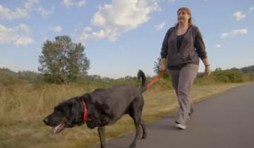 Прикованная к инвалидной коляске, женщина взяла из приюта трехлапого пса