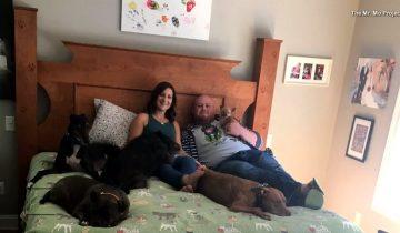 Эта парочка так любит собак, что заказала специально кровать за 4800 долларов