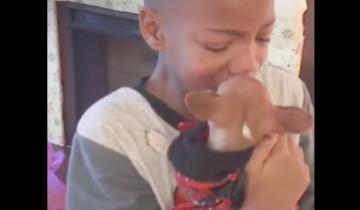 Мальчик только что узнал, что мама взяла из приюта собаку