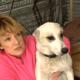 Чудесное спасение из озера собаки с мешком щенков на шее