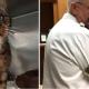 В свои 15 лет этот тощий кот пытался выжить на улице