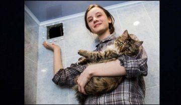 Бася — кошка, спасенная из вентиляционной шахты