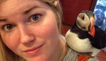 Эту птицу нашли у дороги: спасителям показалось, что она мертва
