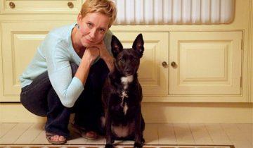 Татьяна Лазарева забрала из приюта собаку