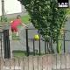 Когда мама запретила выходить на дорогу, а туда выкатился мяч