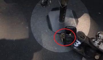 Терпеливый парень спасает бурундука, который застрял в неожиданном месте