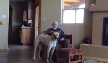 Хозяин собаки почти потерял речь из-за Альцгеймера