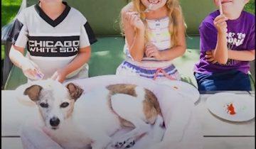 Дети устроили прощальную вечеринку для умирающей собаки, взятой из приюта