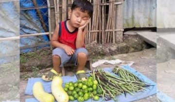 Фото мальчика, задремавшего над овощами, вызвало бурные отклики в сети