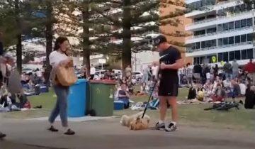 Чтобы не идти домой, пес применил свой актерский талант