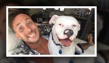 Он разместил фото со своим любимцем в Фейсбуке