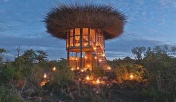 Новая туристическая фишка: птичье гнездо для людей